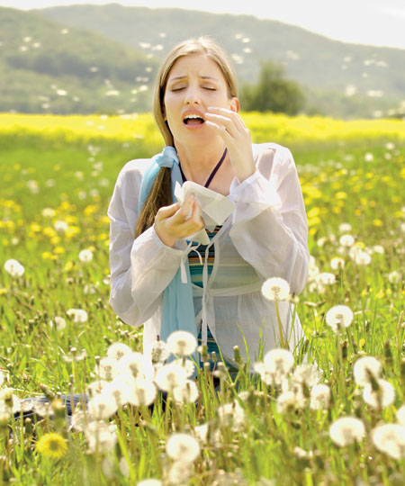 аллергия на подсолнечник что нельзя есть